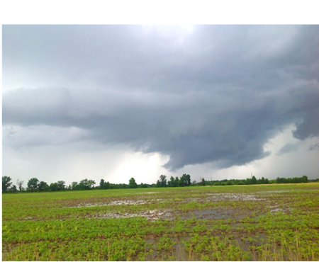Flooded soybean field in Monroe county, MO with wall cloud in background. Photo: Linda Geist